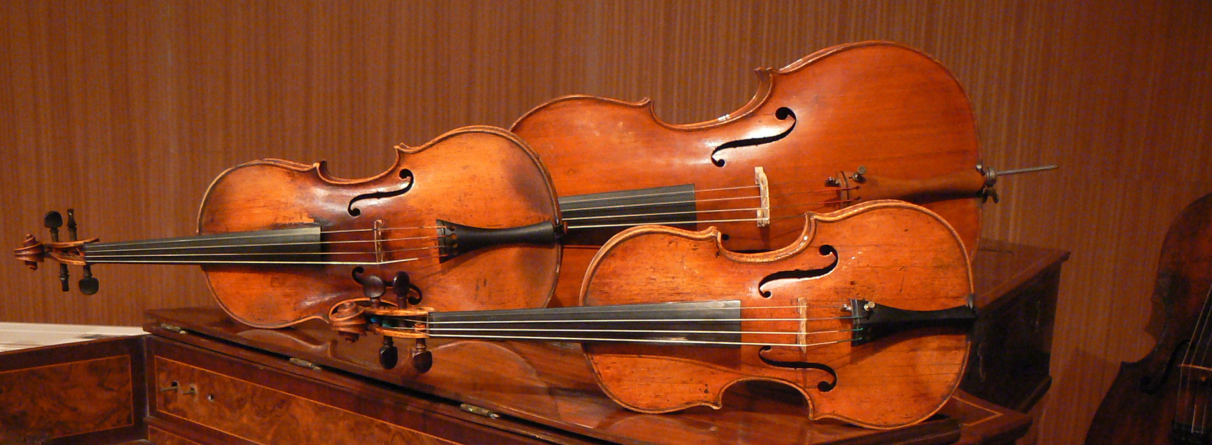 Bows, Strings & Plucked Instruments